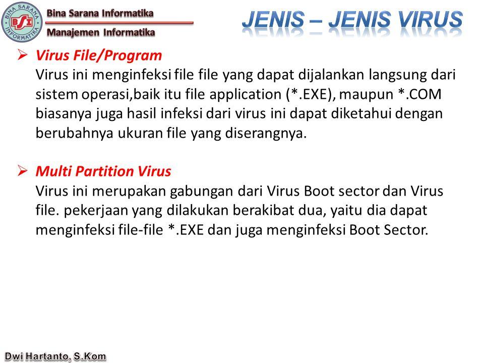  Virus File/Program Virus ini menginfeksi file file yang dapat dijalankan langsung dari sistem operasi,baik itu file application (*.EXE), maupun *.COM biasanya juga hasil infeksi dari virus ini dapat diketahui dengan berubahnya ukuran file yang diserangnya.