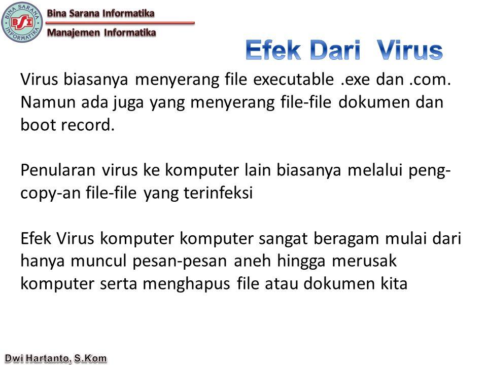 Virus biasanya menyerang file executable.exe dan.com.