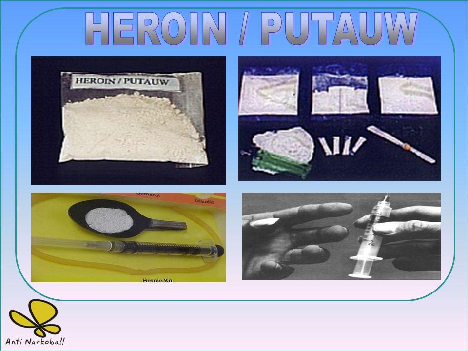 Penggunaan Efek Samping Overdosis Putus Obat Dihisap, Ditelan bersama minuman, disuntikan. Gembira, berkurang rasa lapar, tenaga bertambah, sukar tidu