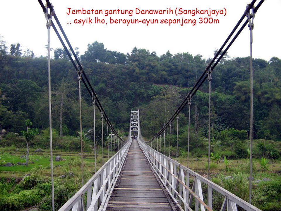 Kawi Boedisetio telebiro.bandung0@clubmember.org Jembatan Gantung Danawarih Jembatan gantung Danawarih (Sangkanjaya) … asyik lho, berayun-ayun sepanja
