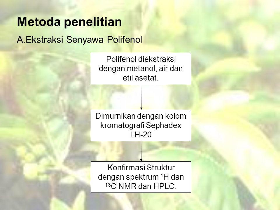 Metoda penelitian A.Ekstraksi Senyawa Polifenol Polifenol diekstraksi dengan metanol, air dan etil asetat.