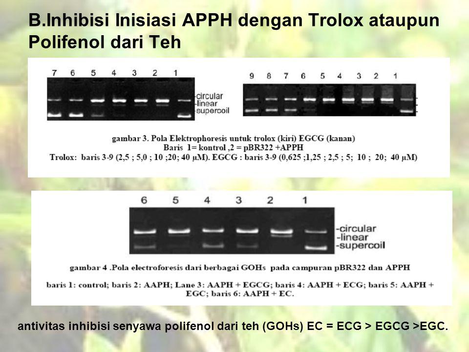 B.Inhibisi Inisiasi APPH dengan Trolox ataupun Polifenol dari Teh antivitas inhibisi senyawa polifenol dari teh (GOHs) EC = ECG > EGCG >EGC.
