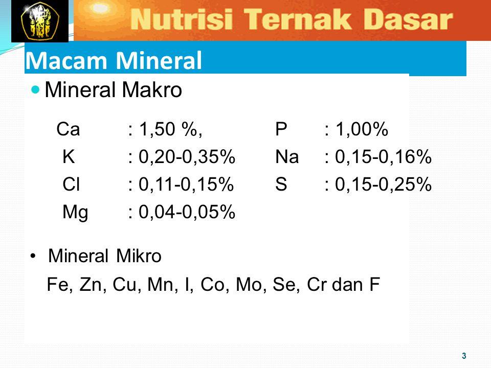 Macam Mineral Mineral Makro 3 Ca: 1,50 %, P: 1,00% K: 0,20-0,35%Na: 0,15-0,16% Cl: 0,11-0,15%S : 0,15-0,25% Mg: 0,04-0,05% Mineral Mikro Fe, Zn, Cu, M