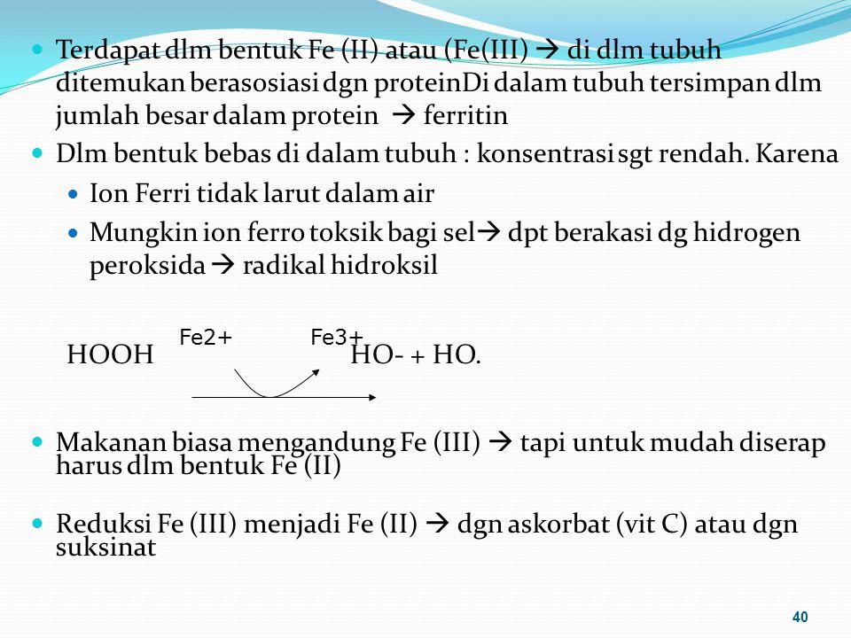 Terdapat dlm bentuk Fe (II) atau (Fe(III)  di dlm tubuh ditemukan berasosiasi dgn proteinDi dalam tubuh tersimpan dlm jumlah besar dalam protein  fe