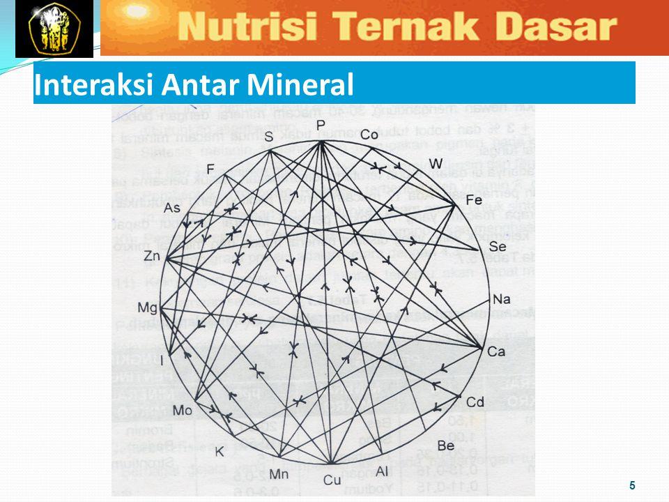 Interaksi Antar Mineral 5