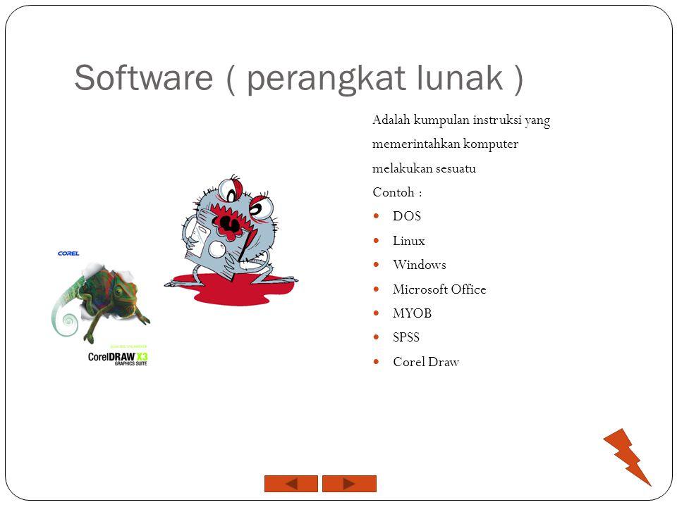 Software ( perangkat lunak ) Adalah kumpulan instruksi yang memerintahkan komputer melakukan sesuatu Contoh : DOS Linux Windows Microsoft Office MYOB SPSS Corel Draw