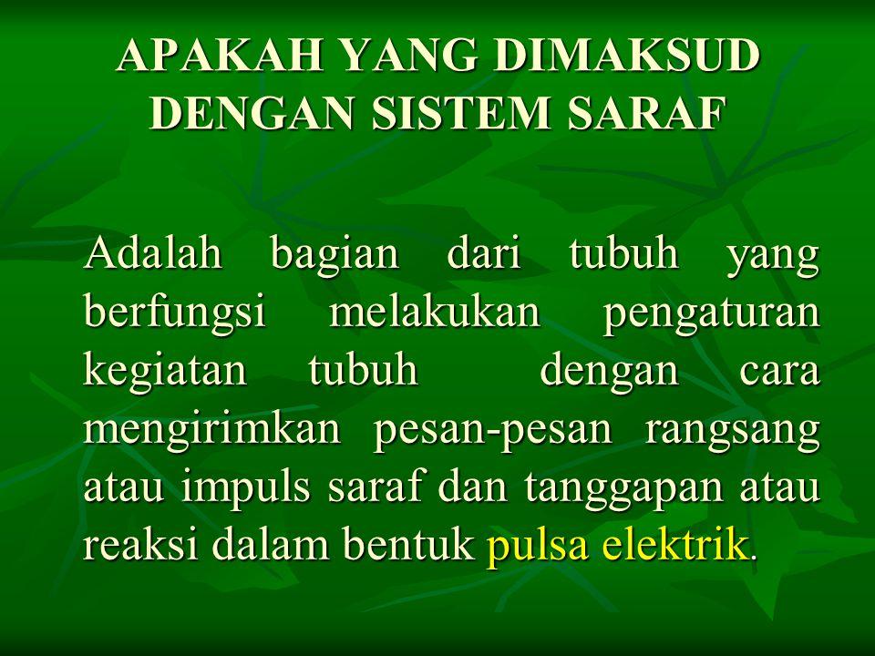 B.Alat Indra 1.