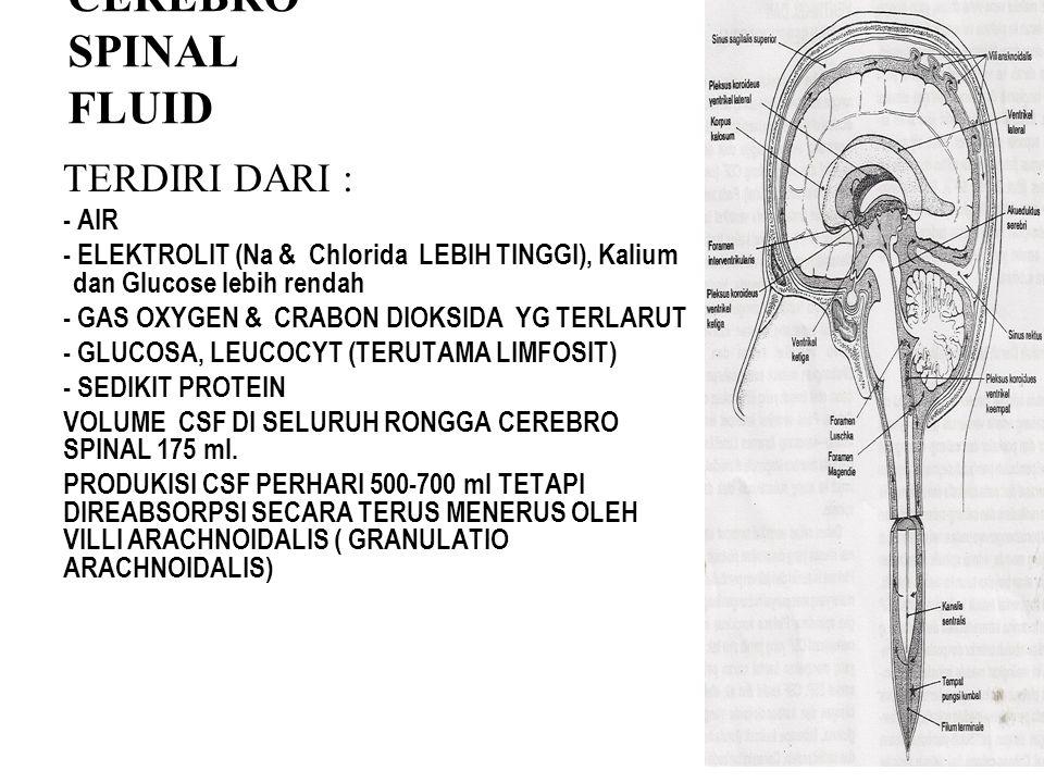 CEREBRO SPINAL FLUID TERDIRI DARI : - AIR - ELEKTROLIT (Na & Chlorida LEBIH TINGGI), Kalium dan Glucose lebih rendah - GAS OXYGEN & CRABON DIOKSIDA YG