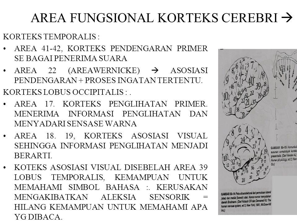 AREA FUNGSIONAL KORTEKS CEREBRI  KORTEKS TEMPORALIS : AREA 41-42, KORTEKS PENDENGARAN PRIMER SE BAGAI PENERIMA SUARA AREA 22 (AREAWERNICKE)  ASOSIAS