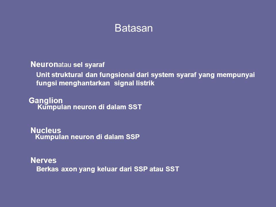 Batasan Neuron atau sel syaraf Unit struktural dan fungsional dari system syaraf yang mempunyai fungsi menghantarkan signal listrik Ganglion Kumpulan