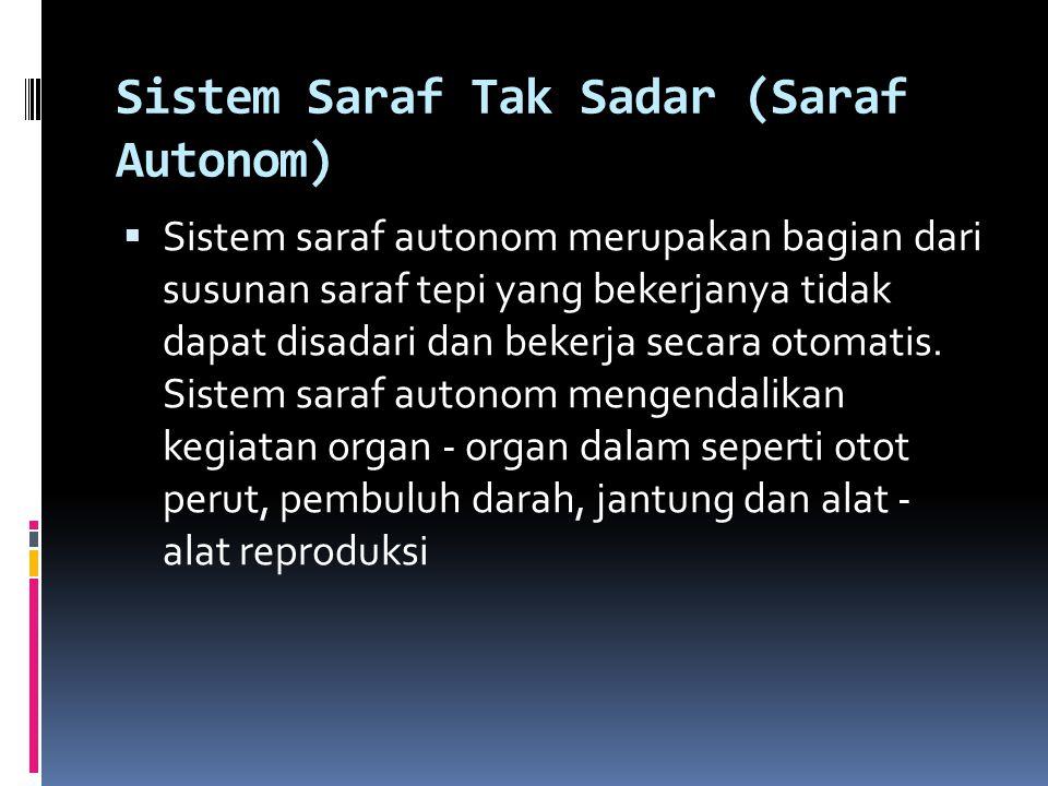 Sistem Saraf Tak Sadar (Saraf Autonom)  Sistem saraf autonom merupakan bagian dari susunan saraf tepi yang bekerjanya tidak dapat disadari dan bekerj