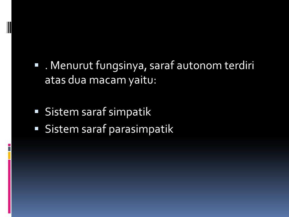 . Menurut fungsinya, saraf autonom terdiri atas dua macam yaitu:  Sistem saraf simpatik  Sistem saraf parasimpatik