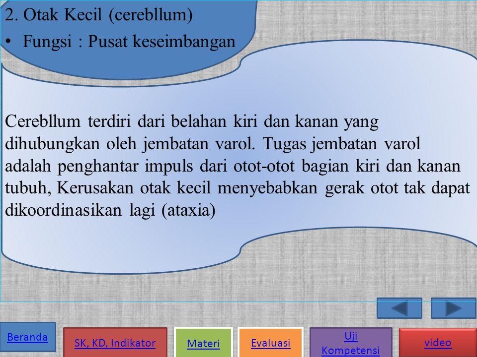 Beranda SK, KD, Indikator Materi Evaluasi Uji Kompetensi video 1.