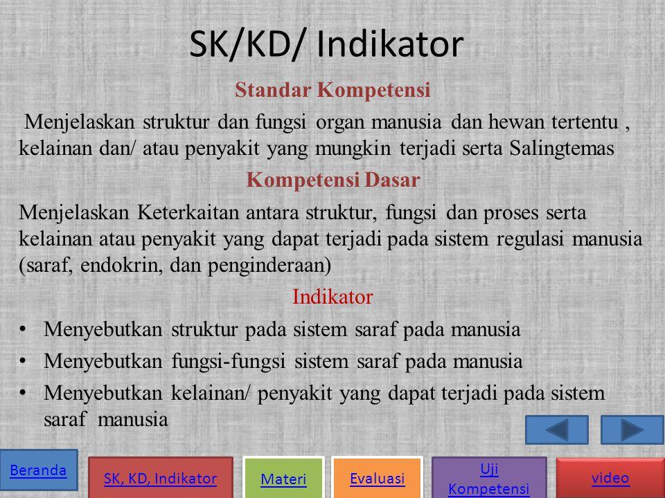 Beranda SK, KD, Indikator Materi Evaluasi Uji Kompetensi video SISTEM SARAF pada MANUSIA