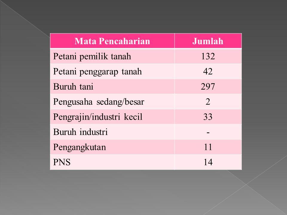 Sratifikasi sosial dilihat dari status pendidikan (formal) Tingkat Pendidikan Jumlah Taman Kanak- kanak - SD452 SMP172 SMA417 D1-D3302 S1-S3120 Total1463