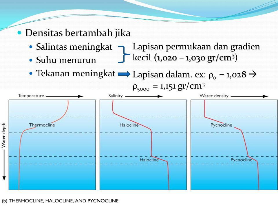 Densitas bertambah jika Salintas meningkat Suhu menurun Tekanan meningkat Lapisan permukaan dan gradien (1,020 – 1,030 gr/cm 3 kecil (1,020 – 1,030 gr