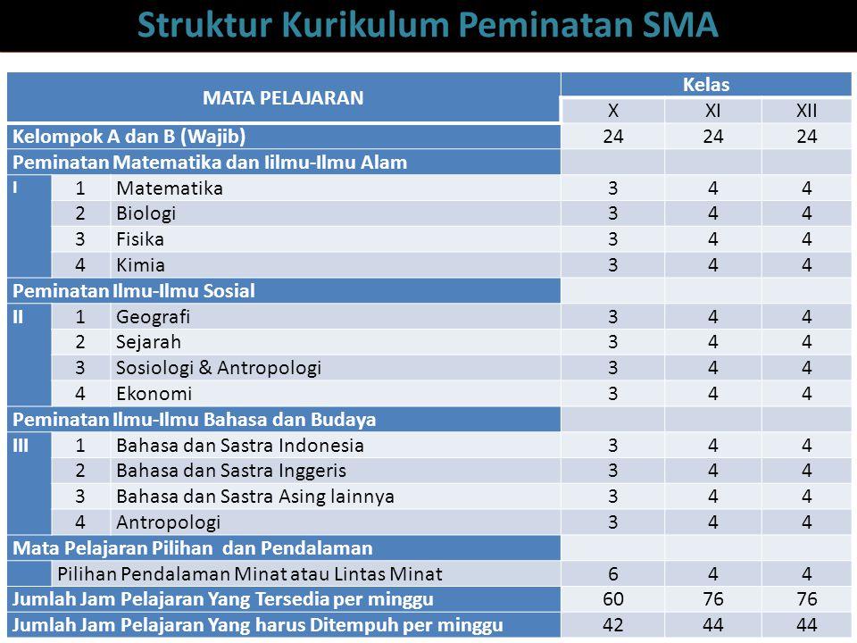  Di SMK/MAK: Peminatan mata pelajaran wajib Peminatan bidang keahlian dan paket keahlian (vokasional) Arah/pelaksanaan karir/ pekerjaan Peminatan studi lanjutan (PT)
