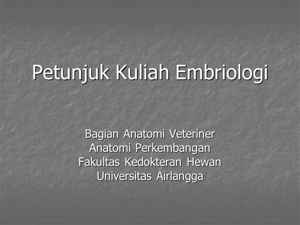 Petunjuk Kuliah Embriologi Bagian Anatomi Veteriner Anatomi Perkembangan Fakultas Kedokteran Hewan Universitas Airlangga