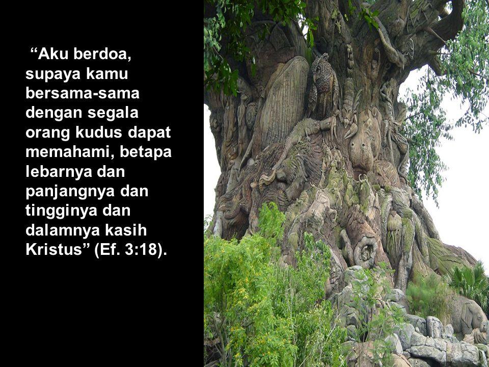 Aku berdoa, supaya kamu bersama-sama dengan segala orang kudus dapat memahami, betapa lebarnya dan panjangnya dan tingginya dan dalamnya kasih Kristus (Ef.
