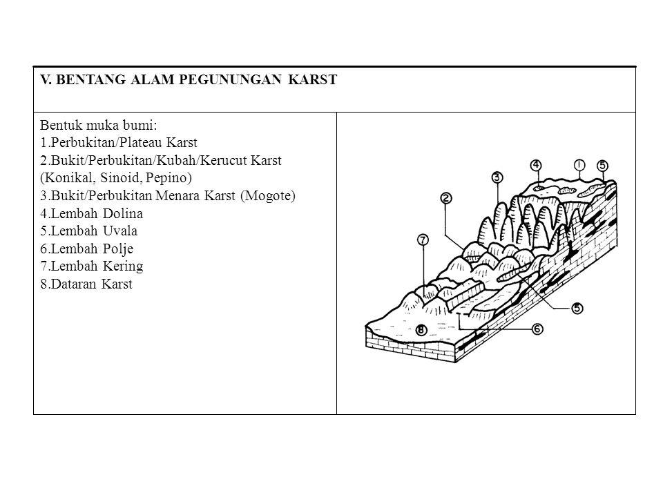 Bentuk muka bumi: 1.Perbukitan/Plateau Karst 2.Bukit/Perbukitan/Kubah/Kerucut Karst (Konikal, Sinoid, Pepino) 3.Bukit/Perbukitan Menara Karst (Mogote)
