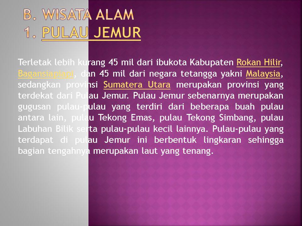 Terletak lebih kurang 45 mil dari ibukota Kabupaten Rokan Hilir, Bagansiapiapi, dan 45 mil dari negara tetangga yakni Malaysia, sedangkan provinsi Sumatera Utara merupakan provinsi yang terdekat dari Pulau Jemur.