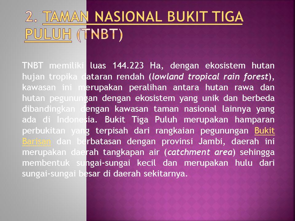TNBT memiliki luas 144.223 Ha, dengan ekosistem hutan hujan tropika dataran rendah (lowland tropical rain forest), kawasan ini merupakan peralihan antara hutan rawa dan hutan pegunungan dengan ekosistem yang unik dan berbeda dibandingkan dengan kawasan taman nasional lainnya yang ada di Indonesia.