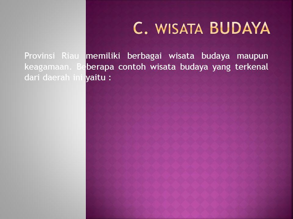 Provinsi Riau memiliki berbagai wisata budaya maupun keagamaan. Beberapa contoh wisata budaya yang terkenal dari daerah ini yaitu :