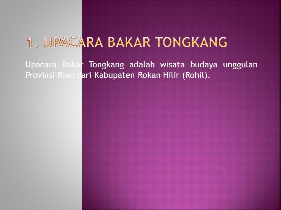 Upacara Bakar Tongkang adalah wisata budaya unggulan Provinsi Riau dari Kabupaten Rokan Hilir (Rohil).