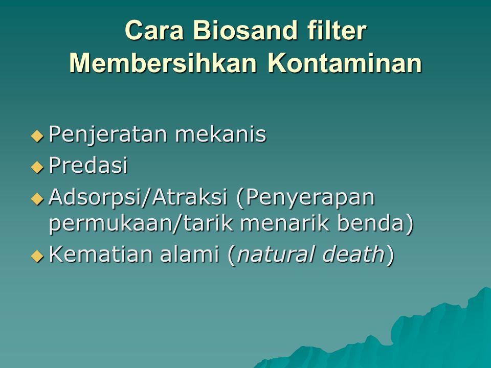 Cara Biosand filter Membersihkan Kontaminan PPPPenjeratan mekanis PPPPredasi AAAAdsorpsi/Atraksi (Penyerapan permukaan/tarik menarik benda) KKKKematian alami (natural death)