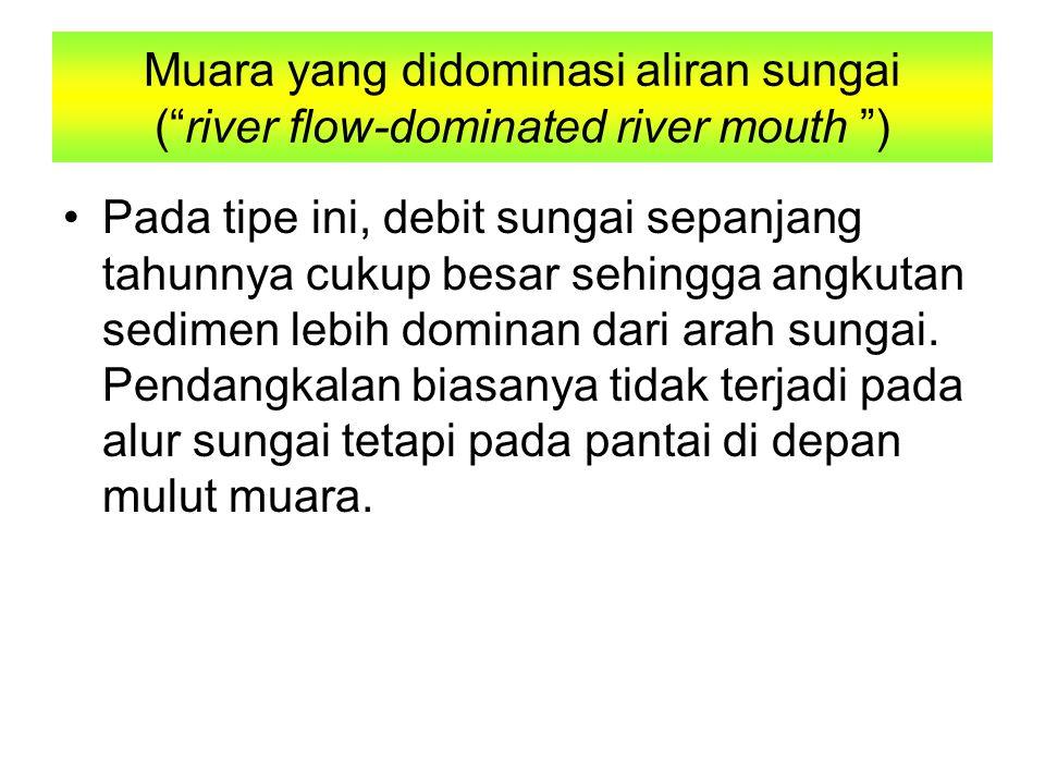 Muara yang didominasi aliran sungai ( river flow-dominated river mouth ) Pada tipe ini, debit sungai sepanjang tahunnya cukup besar sehingga angkutan sedimen lebih dominan dari arah sungai.