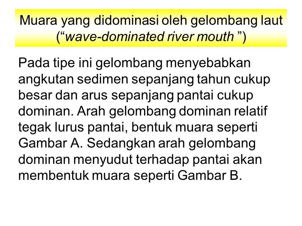 Muara yang didominasi oleh gelombang laut ( wave-dominated river mouth ) Pada tipe ini gelombang menyebabkan angkutan sedimen sepanjang tahun cukup besar dan arus sepanjang pantai cukup dominan.