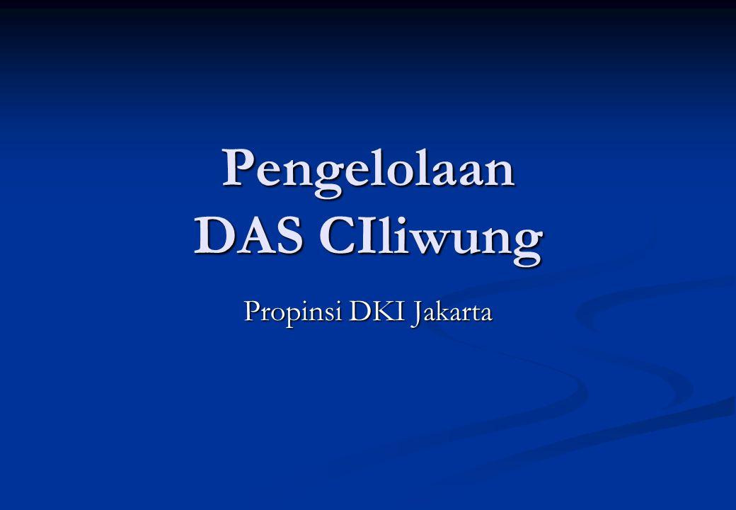 Pengelolaan DAS CIliwung Propinsi DKI Jakarta