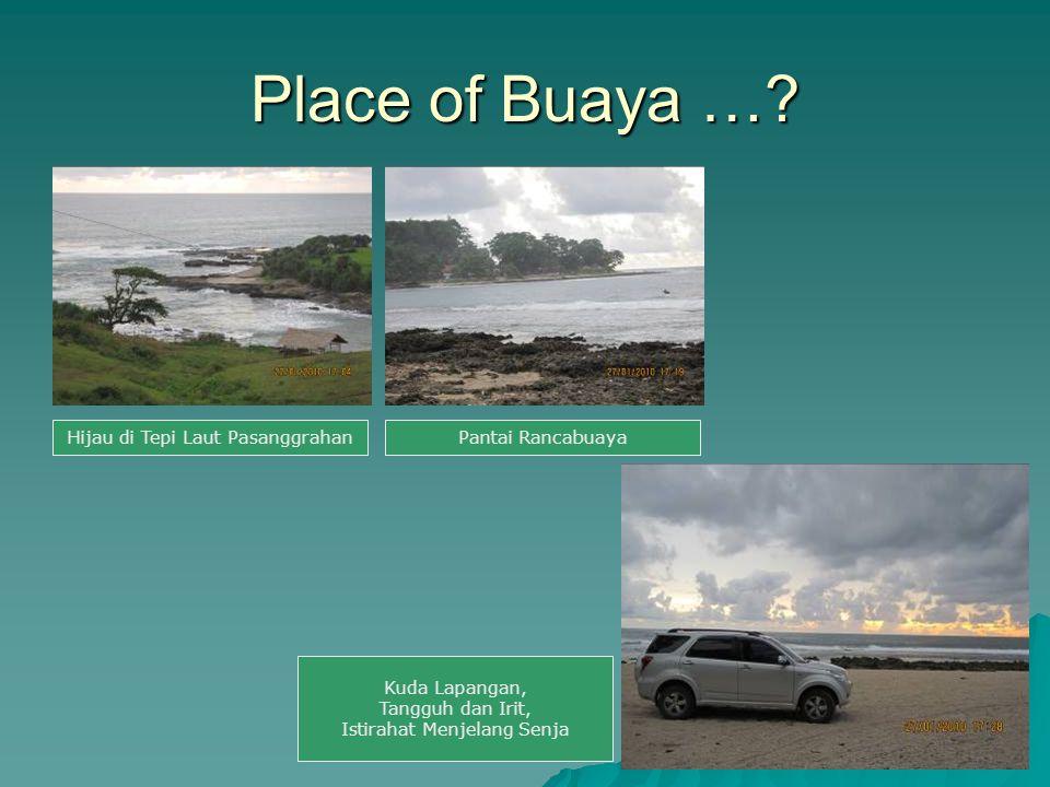 Place of Buaya …? Hijau di Tepi Laut PasanggrahanPantai Rancabuaya Kuda Lapangan, Tangguh dan Irit, Istirahat Menjelang Senja