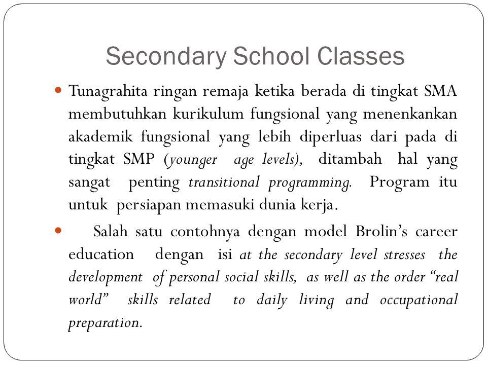 Secondary School Classes Tunagrahita ringan remaja ketika berada di tingkat SMA membutuhkan kurikulum fungsional yang menenkankan akademik fungsional yang lebih diperluas dari pada di tingkat SMP (younger age levels), ditambah hal yang sangat penting transitional programming.