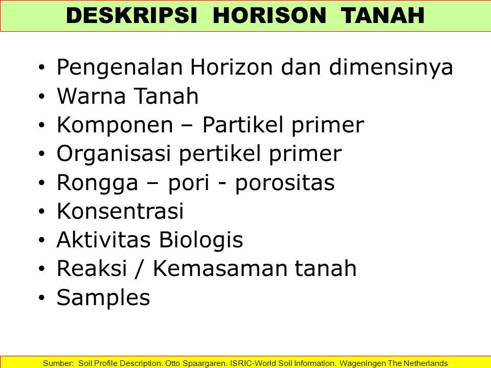 Pengenalan Horizon dan dimensinya Warna Tanah Komponen – Partikel primer Organisasi pertikel primer Rongga – pori - porositas Konsentrasi Aktivitas Bi