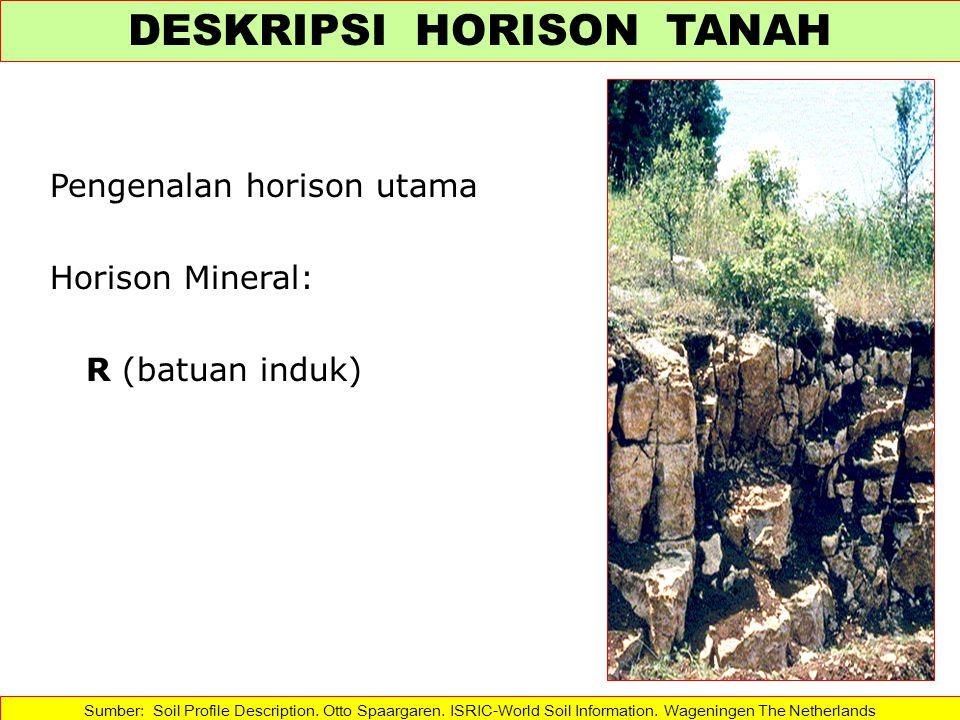 Pengenalan horison utama Horison Mineral: R (batuan induk) Sumber: Soil Profile Description. Otto Spaargaren. ISRIC-World Soil Information. Wageningen