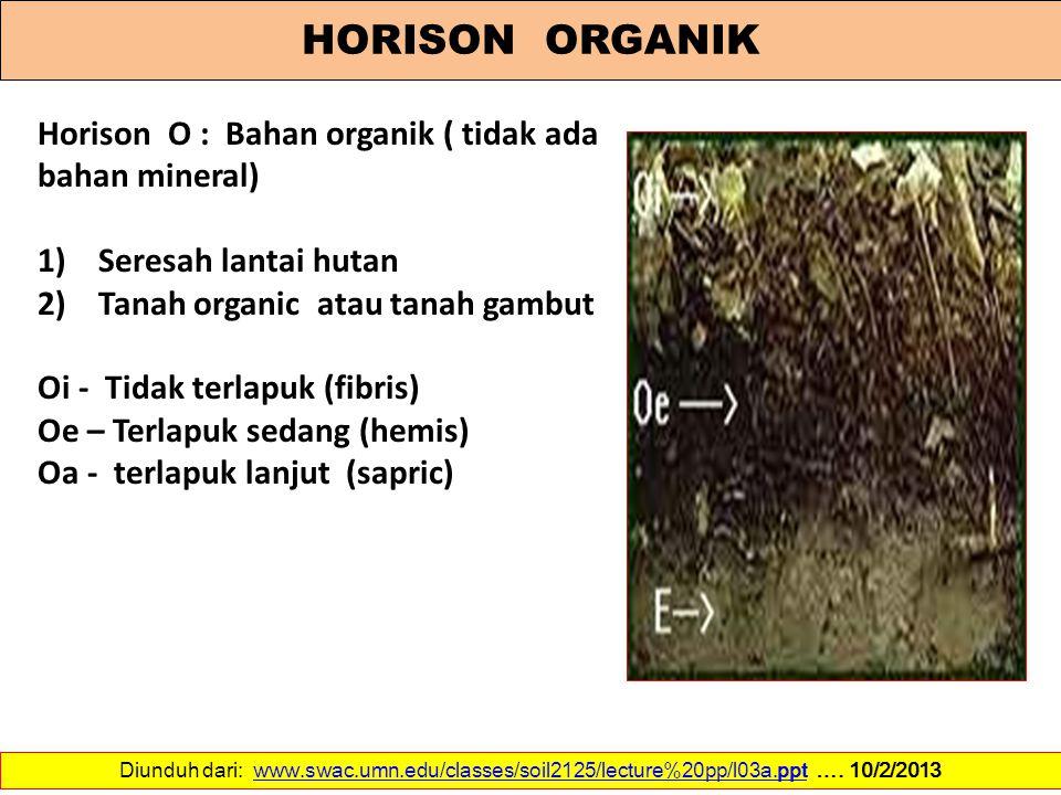 HORISON ORGANIK Horison O : Bahan organik ( tidak ada bahan mineral) 1) Seresah lantai hutan 2) Tanah organic atau tanah gambut Oi - Tidak terlapuk (f