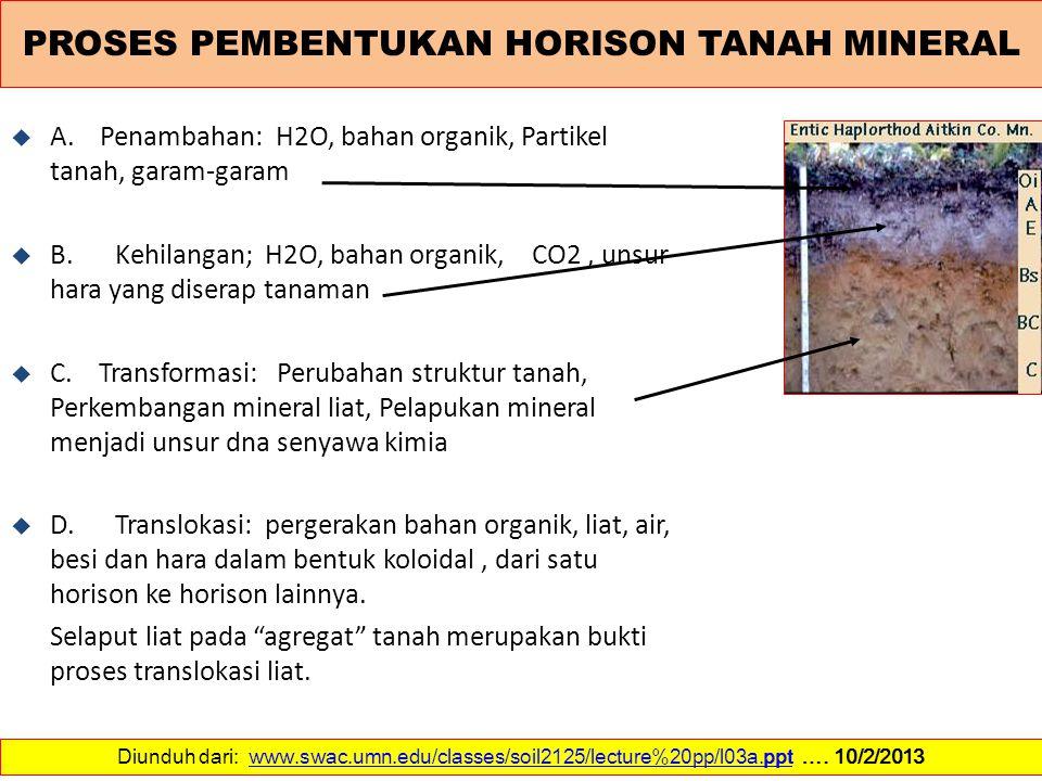PROSES PEMBENTUKAN HORISON TANAH MINERAL u A. Penambahan: H2O, bahan organik, Partikel tanah, garam-garam u B. Kehilangan; H2O, bahan organik, CO2, un