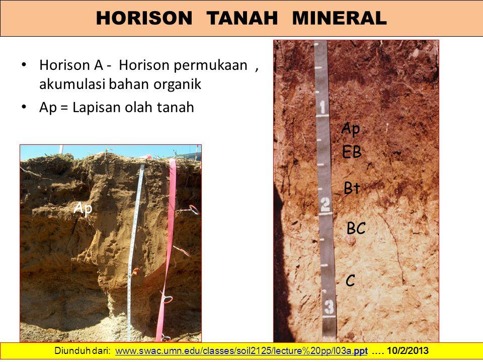 Horison A - Horison permukaan, akumulasi bahan organik Ap = Lapisan olah tanah Ap EB Bt BC C Ap Diunduh dari: www.swac.umn.edu/classes/soil2125/lectur