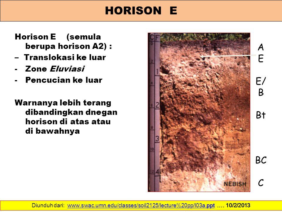 Horison E (semula berupa horison A2) : – Translokasi ke luar -Zone Eluviasi -Pencucian ke luar Warnanya lebih terang dibandingkan dnegan horison di at