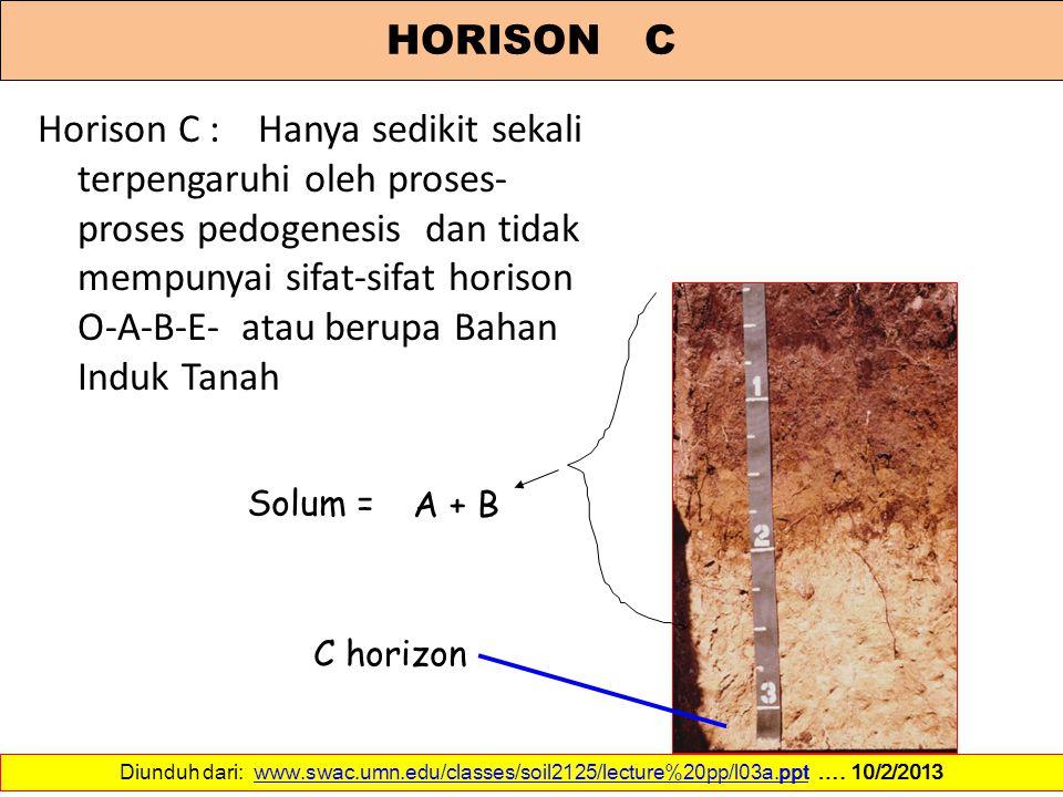 Horison C : Hanya sedikit sekali terpengaruhi oleh proses- proses pedogenesis dan tidak mempunyai sifat-sifat horison O-A-B-E- atau berupa Bahan Induk