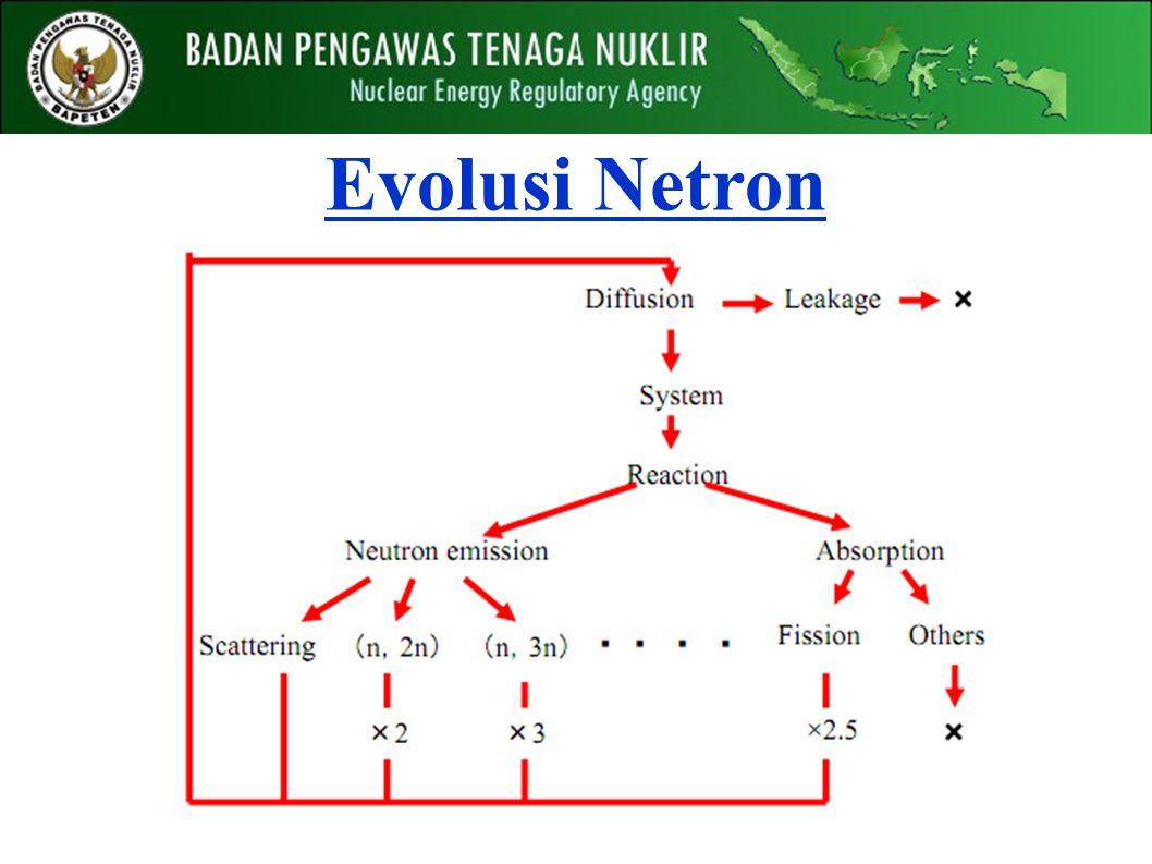 Evolusi Netron