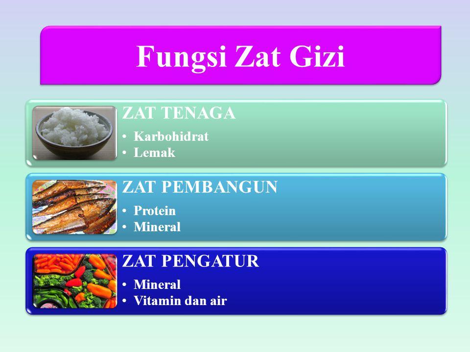 ZAT TENAGA Karbohidrat Lemak ZAT PEMBANGUN Protein Mineral ZAT PENGATUR Mineral Vitamin dan air Fungsi Zat Gizi