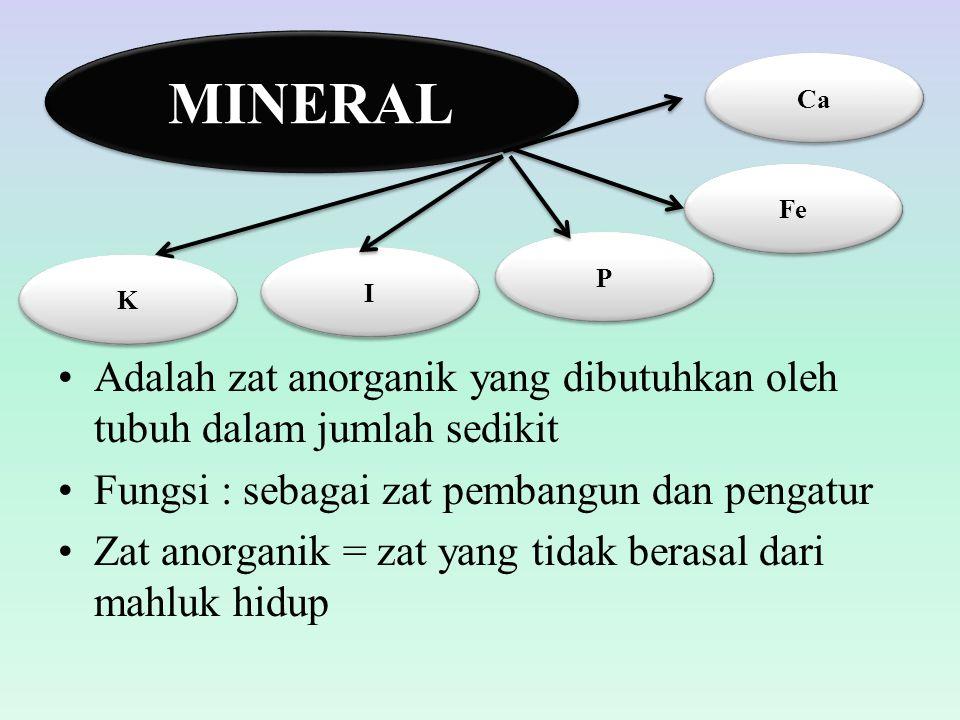 Adalah zat anorganik yang dibutuhkan oleh tubuh dalam jumlah sedikit Fungsi : sebagai zat pembangun dan pengatur Zat anorganik = zat yang tidak berasa