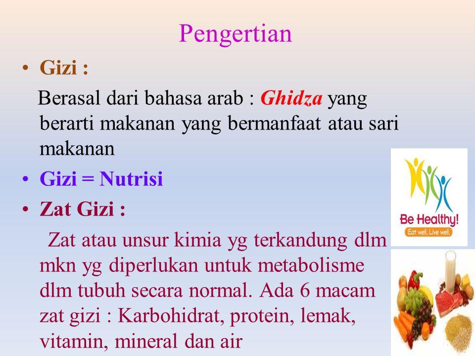 Gizi : Berasal dari bahasa arab : Ghidza yang berarti makanan yang bermanfaat atau sari makanan Gizi = Nutrisi Zat Gizi : Zat atau unsur kimia yg terk