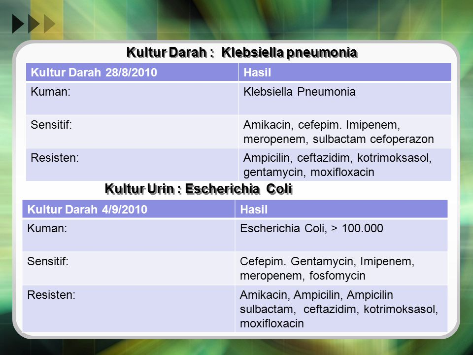 Kultur Darah : Klebsiella pneumonia Kultur Darah 28/8/2010Hasil Kuman:Klebsiella Pneumonia Sensitif:Amikacin, cefepim. Imipenem, meropenem, sulbactam