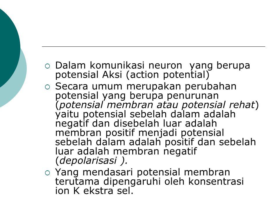  Dalam komunikasi neuron yang berupa potensial Aksi (action potential)  Secara umum merupakan perubahan potensial yang berupa penurunan (potensial m