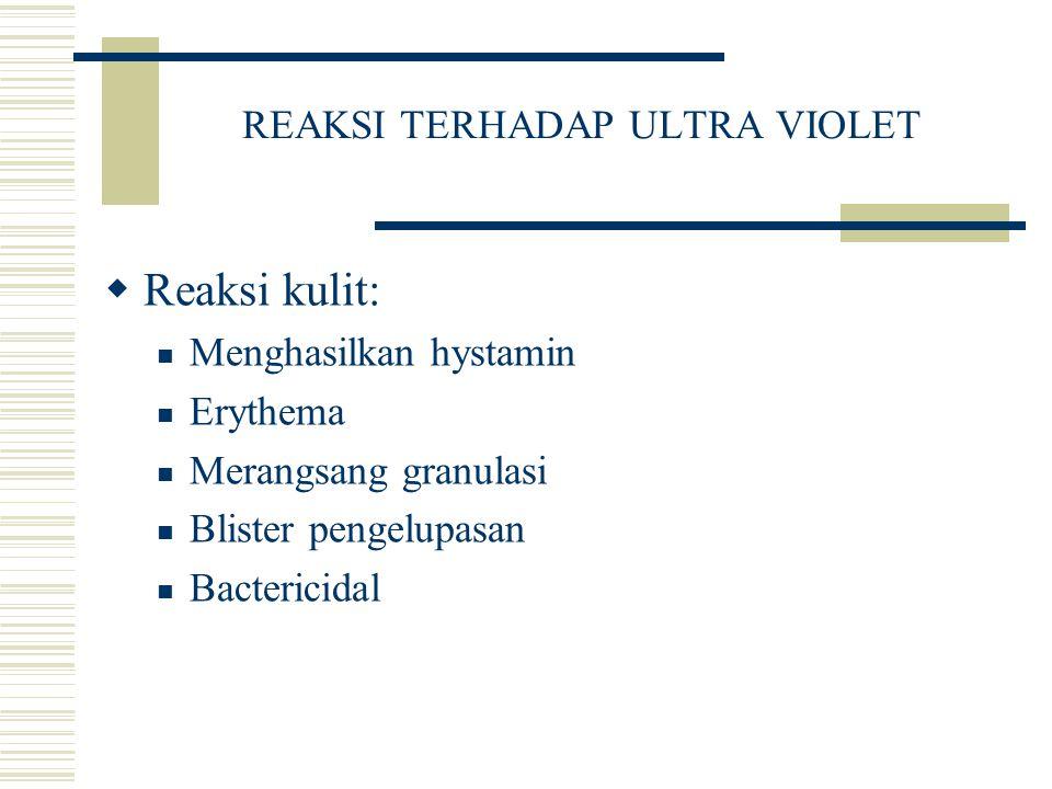 REAKSI TERHADAP ULTRA VIOLET  Reaksi kulit: Menghasilkan hystamin Erythema Merangsang granulasi Blister pengelupasan Bactericidal
