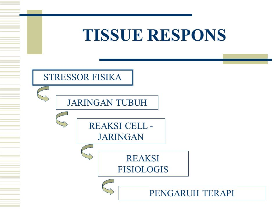 JENIS STRESSOR  THERMAL –Panas –Dingin  ELECTRIC –Galvanis (CDC/IDC) –Alternating curent frekwensi rendah; -menengah; -tinggi  LIGHT –Infra red –Ultra violet –Laser  MECHANIC –Gaya mekanik (misal air)