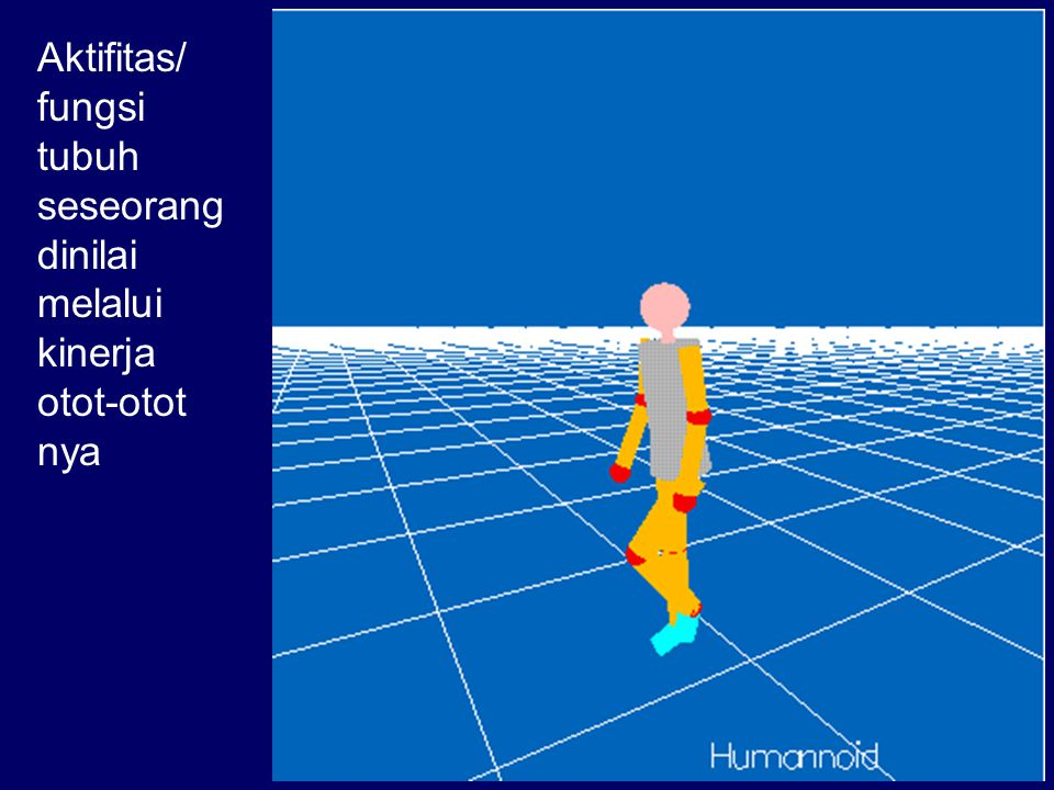 Aktifitas/ fungsi tubuh seseorang dinilai melalui kinerja otot-otot nya
